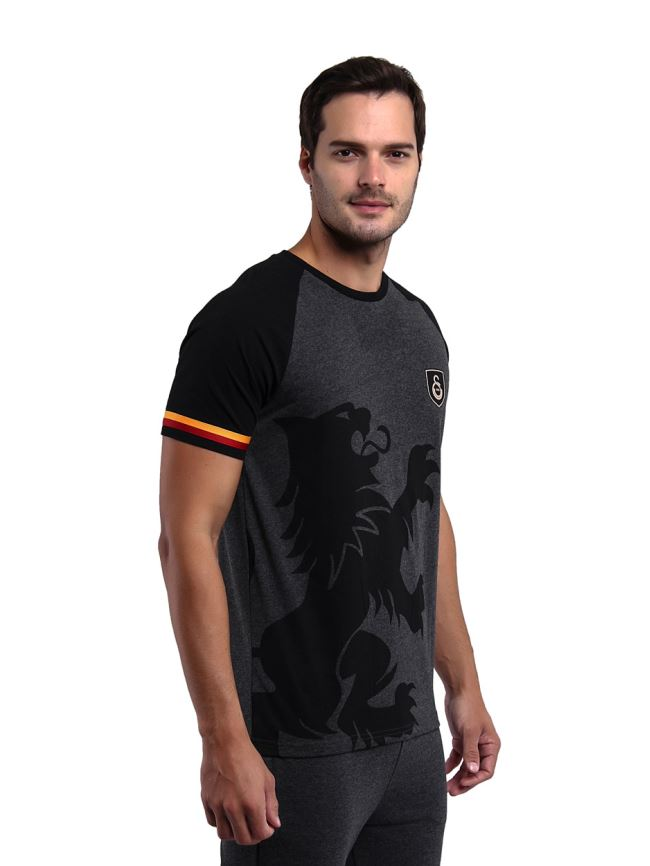 Galatasaray Erkek T-shirt E201109